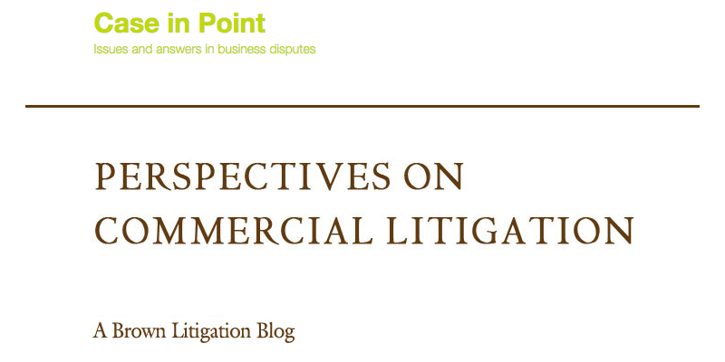 litigation guy